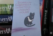 Libreria Traboccante – Fabbri Centauria