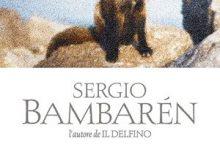 Storia della piccola volte che mi insegnò il perdono di Sergio Bambarén – Sperling & Kupfer