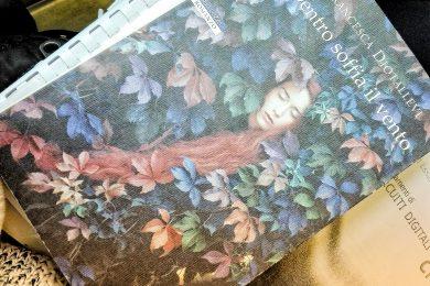 Dentro soffia il vento di Francesca Diotallevi